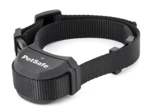 petsafe stay and play collar