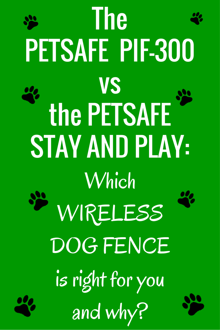 The PetSafe PIF-300 vs the Stay and Play