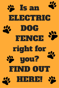 Is an electric dog fence right for you?