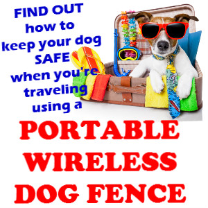 Portable wireless dog fence