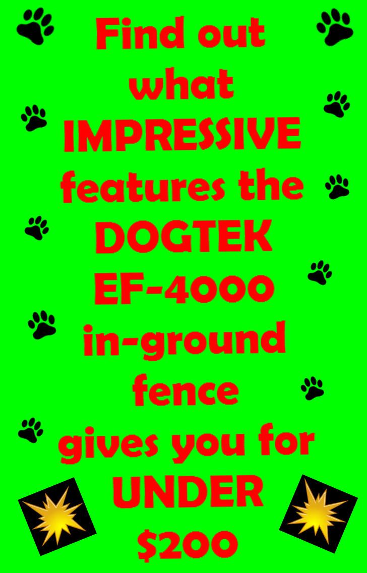 pinterest image for ef-4000