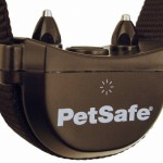 Stay and Play Collar Metal Contact Points