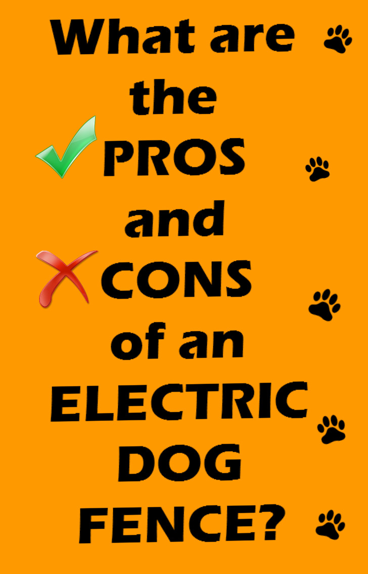 The Pros And Cons Of Electric Dog Fences Dig Your Dog